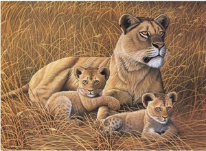 Leeuwen Famillie NIEUW