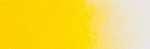 Cadmium Yellow medium D13