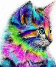 KLeurrijk kitten