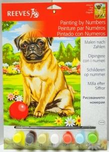 Hond  Pug