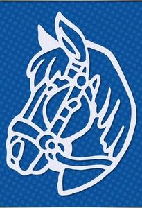 Paarde hoofd