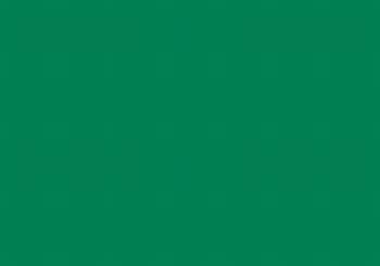 fotokarton donker groen