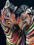 Paar zebra`s