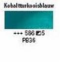 kobalt turkooisbaluw